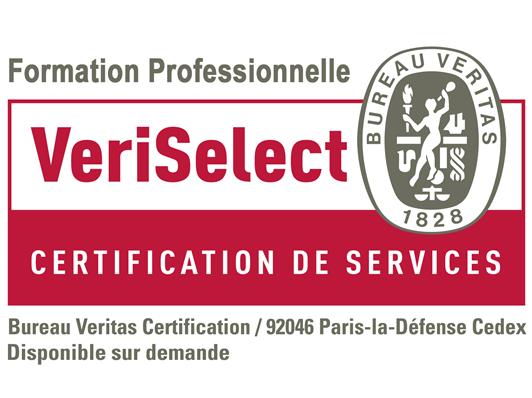 Certification VeriSelect Formation professionnelle obtenue !